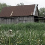Forest Dale Barn
